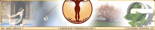 The Body Tree: Dr. Sara Carson's Ayurvedic Therapy